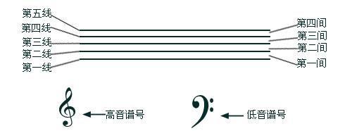 分别为高音谱号和低音谱号